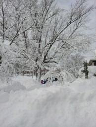 blizzard2013street